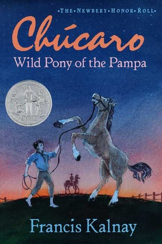 Chúcaro: Wild Pony of the Pampa
