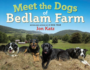 Meet the Dogs of Bedlam Farm