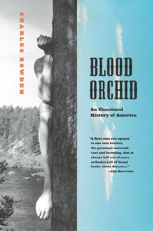 Blood Orchid by Charles Bowden