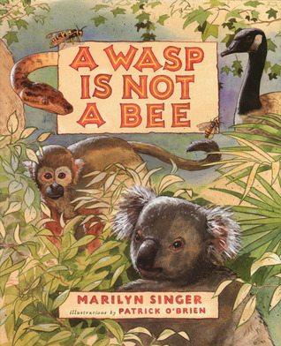 A Wasp Is Not a Bee