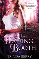 The Waiting Booth by Brinda Berry