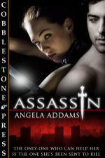 Assassin by Angela Addams