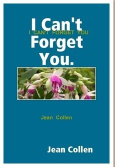 """I Can't Forget You"""