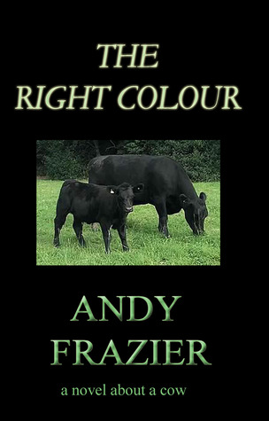 The Right Colour by Andy Frazier