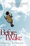 Before I Wake: A Novel