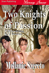 Two Knights of Passion (Bewitching Desires, #2)