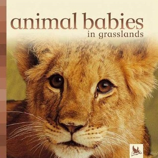 Animal Babies in Grasslands