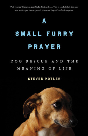 A Small Furry Prayer by Steven Kotler
