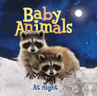 Baby Animals At Night by Kingfisher