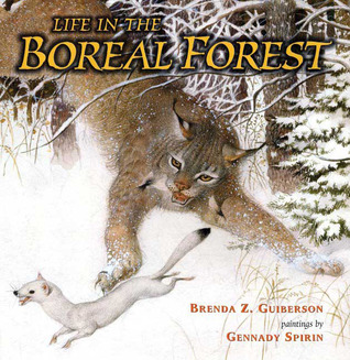 Life in the Boreal Forest by Brenda Z. Guiberson