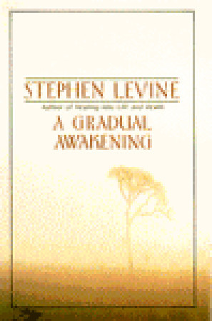 A Gradual Awakening by Stephen Levine