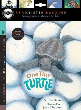 One Tiny Turtle with Audio, Peggable by Nicola Davies