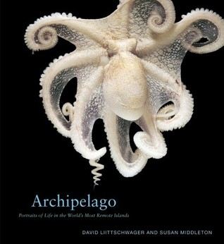 Archipelago: Portraits of Life in the World