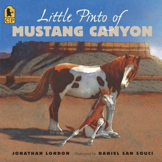 Little Pinto of Mustang Canyon