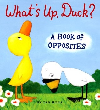 What's Up, Duck? by Tad Hills
