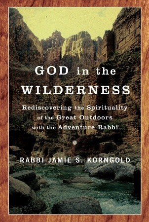 God in the Wilderness by Jamie S. Korngold