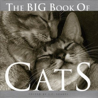 The Big Book of Cats by J.C. Suares