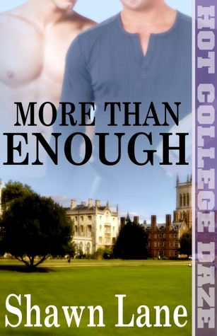 More Than Enough by Shawn Lane