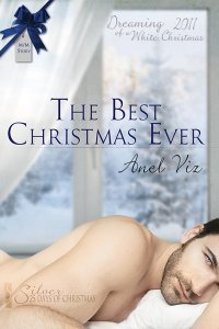 The Best Christmas Ever by Anel Viz