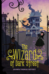 The Wizard of Dark Street  (Oona Crate Mystery, #1) by Shawn Thomas Odyssey
