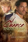 A Chance Encounter by Gale Stanley