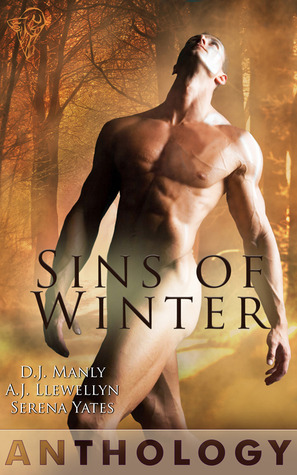 Sins of Winter Anthology by D.J. Manly