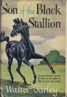 Son of the Black Stallion (The Black Stallion, #3)