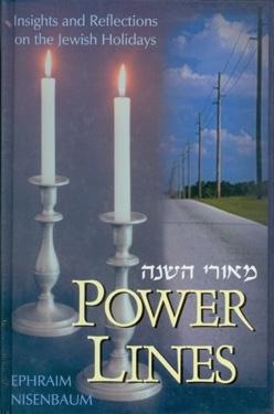 Power lines : Insights and Reflections on the Jewish Holidays