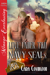 Love Under Two Navy SEALs by Cara Covington