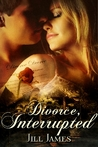 Divorce, Interrupted (Lake Willowbee, #1)