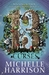 The Thirteen Curses (Thirteen Treasures, #2)
