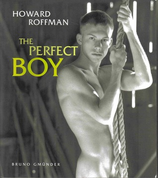 The Perfect Boy by Howard Roffman