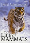 The Life of Mammals by David Attenborough