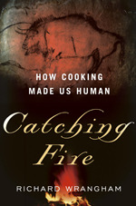 Catching fire: How Cooking Made Us Human