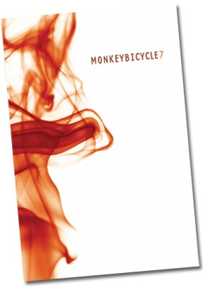 Monkeybicycle by Steven Seighman