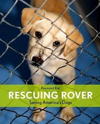 Rescuing Rover: Saving America