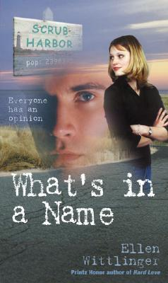What's in a Name by Ellen Wittlinger