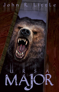 Ursa Major by John R. Little