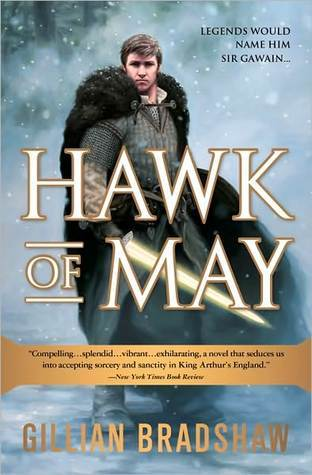 Hawk of May (Down the Long Wind #1)