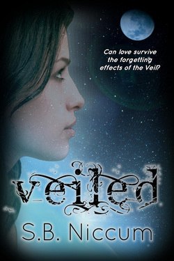 Veiled by S.B. Niccum