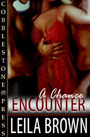 A Chance Encounter by Leila Brown