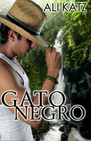 Gato Negro by Ali Katz