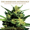 The Marijuana Anthology: Grower's Secrets Revealed