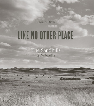 Like No Other Place by David A. Owen