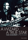 A Wizard a True Star: Todd Rundgren in the studio