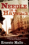Needle in a Haystack by Ernesto Mallo