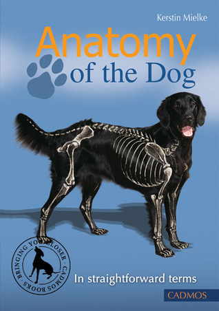 Anatomy of the Dog: In Straightforward Terms