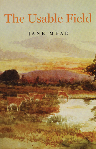 The Usable Field by Jane Mead