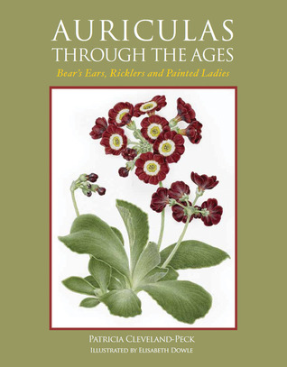Auriculas Through the Ages: Bear's Ears, Ricklers and Painted Ladies