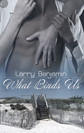 What Binds Us by Larry  Benjamin
